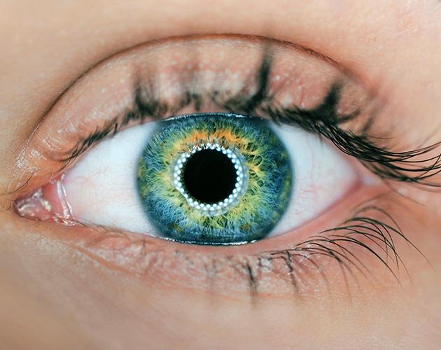 Eye Doctor Toronto
